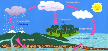 watercycle-f